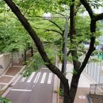 パークコート赤坂桜坂05
