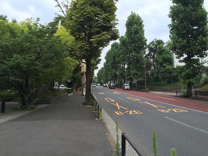 ガーデンヒルズ四ツ谷 迎賓の森_赤坂御所そばの現地周辺の様子写真_7_学習院初等科へ向かう坂