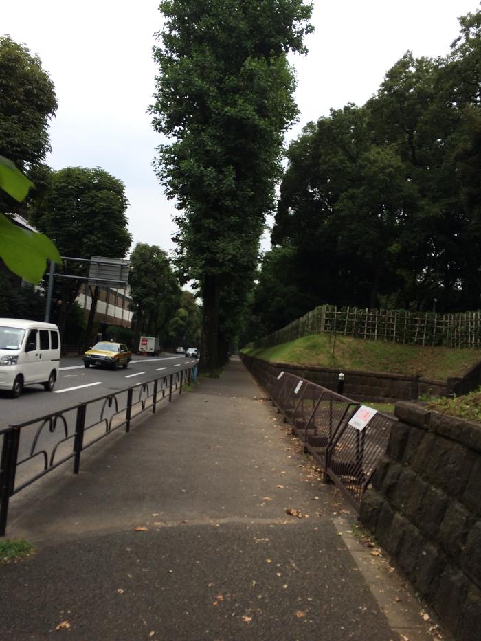 ガーデンヒルズ四ツ谷 迎賓の森_赤坂御所そばの現地周辺の様子写真_9_権田原交差点からの下り道