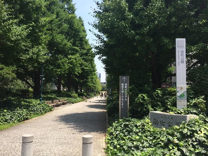 浜町公園の緑溢れる遊歩道