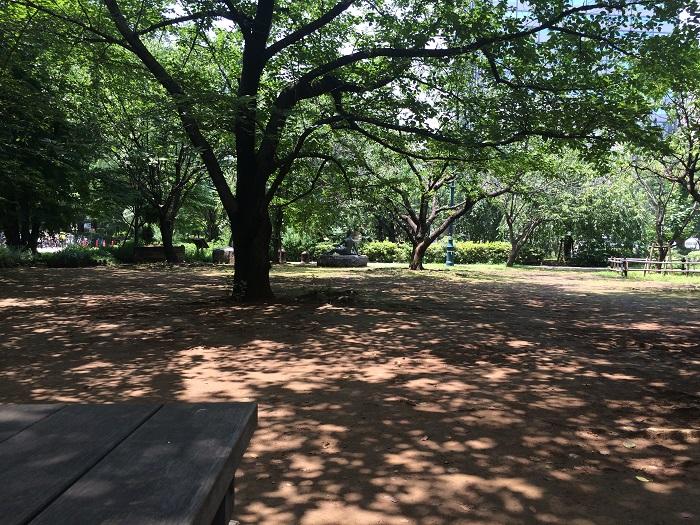 浜町公園は浜町駅からすぐの好アクセスで自然溢れる環境、ランニング
