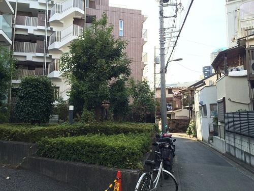 インプレスト早稲田_7_通り