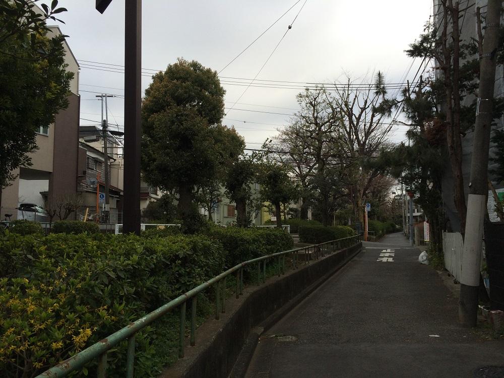 パークリュクス渋谷西原_玉川上水旧水路西原緑道2